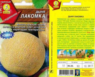 Ранние сорта дынь для средней полосы России