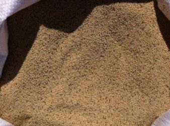 Как собрать семена амаранта на даче?